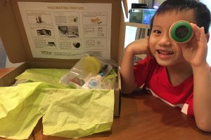 Review, Giveaway AND Discount Code: Peas in a Box
